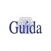 Logo Alfredo Guida Editore S.r.l.